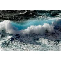 庞大同 海拍摄影作品集一  收藏品推荐