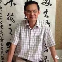无心是道——中国书法家协会会员方斌书法专辑