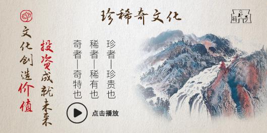 【视频】珍稀奇文化产业宣传片