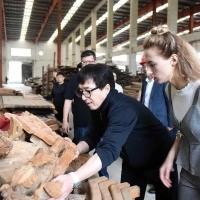 成龙送古民居回安徽故乡,曾因将4古建捐引争议
